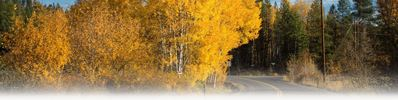 Autumn on a Greenbluff Road by JamesRichman (thumbnail)