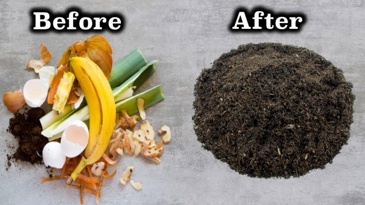 Composting Before After