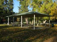 A green and white picnic shelter surrounded by trees.