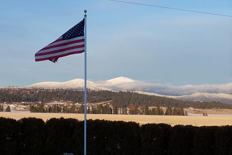 An American flag flying, with trees in the distance.