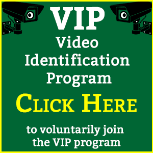 Video Identification Program Opens in new window