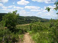 Scenic view of Dishman Hills Conservation Area.